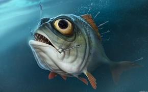 Картинка глаза, вода, рыбалка, рыба, пиранья, крючки