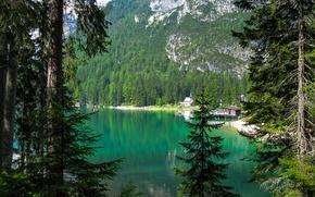 Картинка лес, горы, озеро, Италия, lago di braies