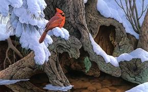 Картинка зима, снег, дерево, птица, живопись, кардинал, Jerry Gadamus, The Witness Tree