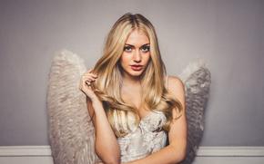 Картинка девушка, модель, блондинка, girl, hot, sexy, model, сексуальная, blonde, ангелочек, Nicole Neal, Николь Нил