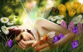 Картинка лето, девушка, цветы, птица, бабочка, фея, by Ka-Wo
