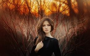 Картинка лес, трава, взгляд, закат, секси, поза, милая, волосы, Девушка, фигура, платье, брюнетка, girl, шатенка, grass, ...