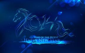 Картинка синий, фон, праздник, Новый год, 2014, год лошади