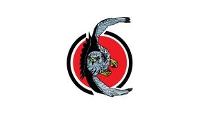 Картинка орел, крылья, клюв, полёт
