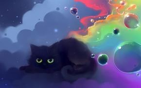 Обои шарики, кошка, цвета, рисунок, nyan, художник apofiss