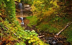 Картинка осень, лес, листья, деревья, скала, водопад, поток