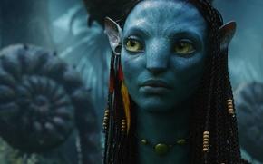 Обои Neytiri, Аватар, Na'vi