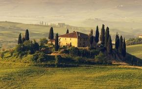 Картинка деревья, дом, поля, Италия, Italy, Таскания