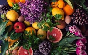 Картинка яблоки, апельсины, тюльпаны, фрукты, роскошь, шишки, петрушка, лимоны, сирень