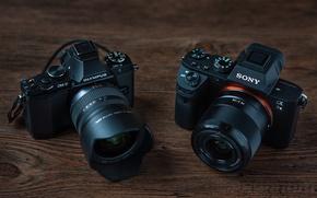Картинка макро, фон, камеры, Olympus OM-D E-M5, Sony Alpha 7 II