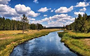 Обои облака, небо, Река, лес, деревья