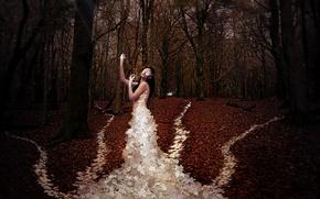 Картинка осень, листья, девушка