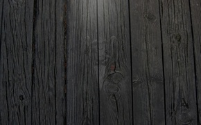 Картинка wallpaper, monkey, wood, 1920x1080