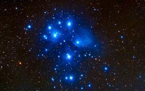 Обои созвездие, звезды, космос, плеяды