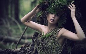 Картинка листья, девушка, ветки, природа, дерево, мох, папоротник, венок