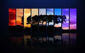 Обои цвет, полоски, дерево