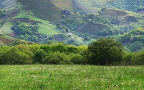 Обои горы, трава, холмы, солнце, деревья