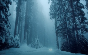 Картинка холод, зима, дорога, car, машина, снег, деревья, природа, фон, дерево, обои, елки, wallpaper, white, автомобиль, ...