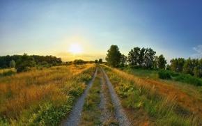 Картинка дорога, лето, солнце, восход, поляна