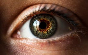 Картинка макро, глаз, зрачок, радужная оболочка глаза