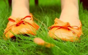 Картинка трава, природа, лист, обувь