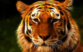 Картинка взгляд, морда, тигр, 3D графика