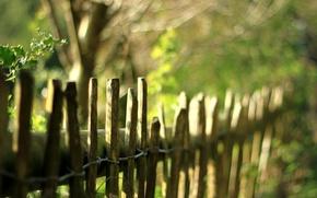Обои природа, забор, ограда, ограждение