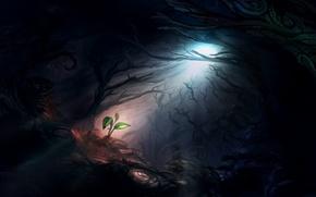 Обои луч, чаща, свет, жизнь, арт, мрачно, росток, лес