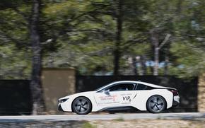 Картинка BMW, Hybrid, 2014