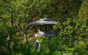 Картинка сад, лиственница, каменный фонарь, китайский сад