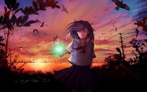 Картинка небо, девушка, облака, закат, птицы, город, провода, аниме, арт, форма, школьница, бенгальские огни, mikan