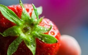 Картинка капли, макро, клубника, Colorful, Strawberry, плод