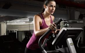 Обои fitness, exercise machine, transpiration, warm-up