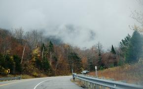 Картинка дорога, туман, Осень, road, autumn, fog, fall