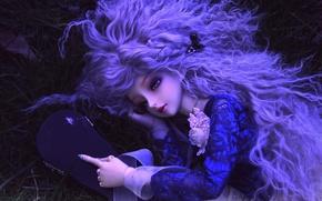 Картинка волосы, игрушка, кукла