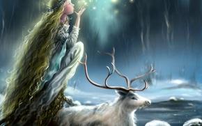 Картинка животное, снег, лед, зима, принцесса, лицо, профиль, олень, огоньки, девушка, длинные волосы, мания, рога