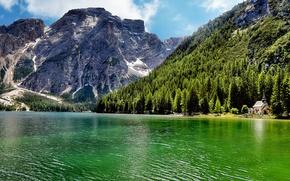 Картинка лес, деревья, пейзаж, горы, природа, озеро, Италия, Italy, Lago di Carezza
