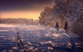 Картинка зима, снег, обработка, конная прогулка