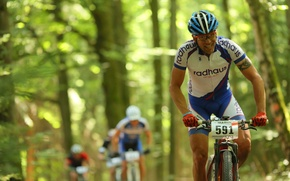Картинка forest, athlete, mountain biking