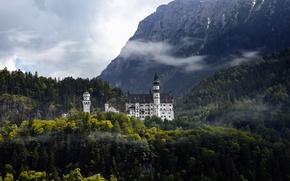 Обои лес, горы, замок, Германия, Нойшвайнштайн
