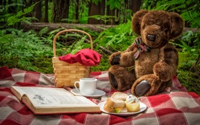 Картинка природа, игрушка, медведь, чашка, книга, пикник, корзинка, бутерброды, плюшевый мишка