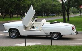Картинка Car, White, Cabriolet, Custom, Volga GAZ 21