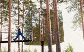 Картинка лес, сосны, Vogue, Karlie Kloss, зеркальный куб