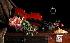 Картинка цветок, фотография, скрипка, спички, фотоаппарат, ткань