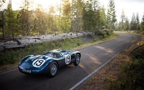 Картинка Jaguar, ягуар, 1951, C-Type