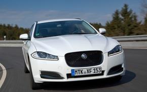 Картинка car, фары, Jaguar, ягуар, вид спереди, road, speed, Sportbrake