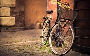 Картинка bicycle, flower, photography, bike, street