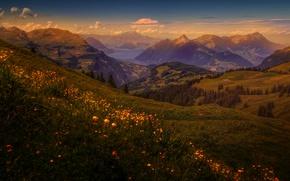 Картинка Природа, Горы, Луг, Пейзаж
