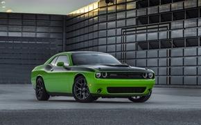 Картинка green, Dodge, Challenger, автомобиль, мускулкар, додж, muscle car, маслкар, T/A