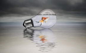 Картинка стиль, фон, лампа, рыбка